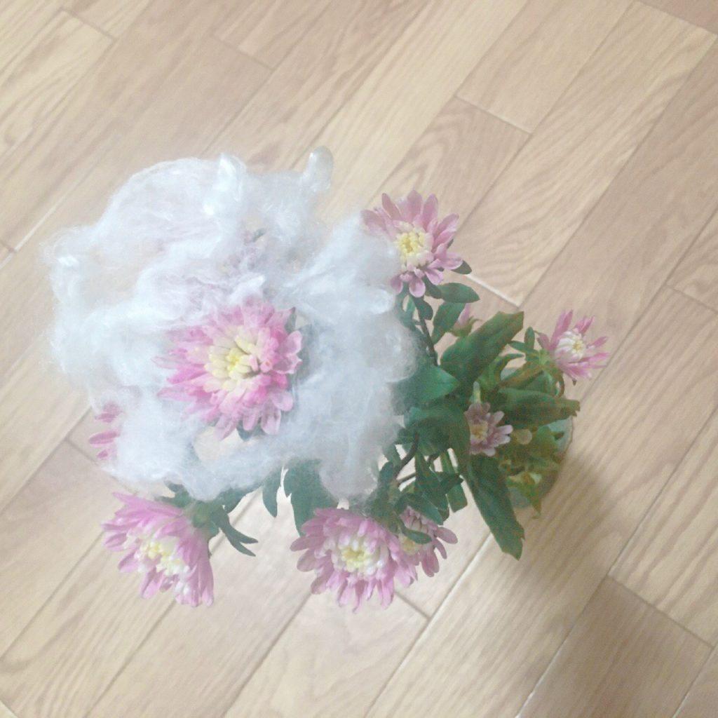 菊、重陽の節句